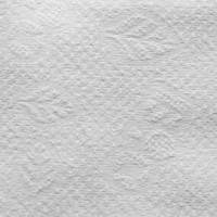 Vienkartiniai rankšluosčiai  Bio 100 vnt, 70x40 cm